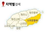 제주관광 - 서귀포동부권